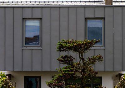 Aluminiu-Windows-into-Zinc