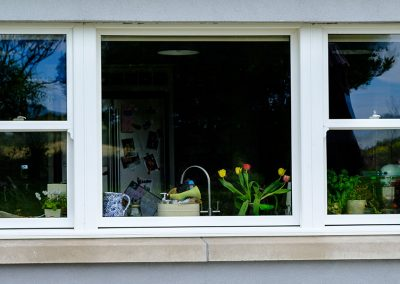 Sliding-Sash-Windows